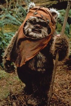 youth-ewok